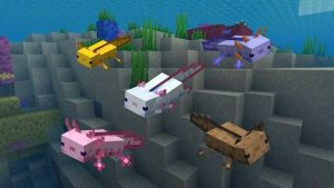 changes to axolotls minecraft-1.17.1